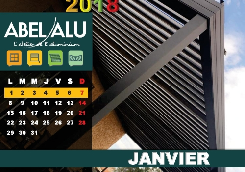 JANVIER 2018 – ABEL ALU